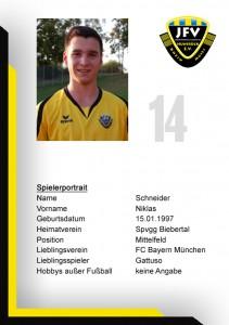 Schneider_14